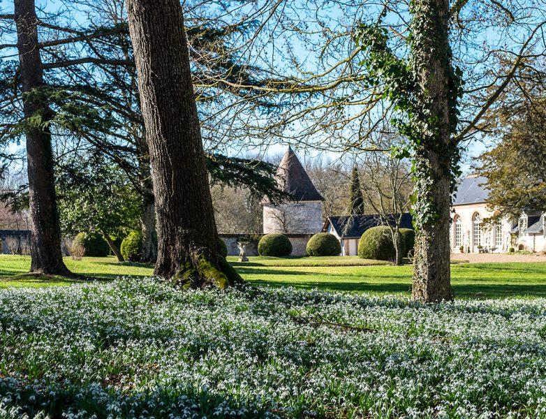Location château et parc près de Chambord – Château des Grotteaux